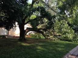 Minnesota storm - be prepare to fill a claim